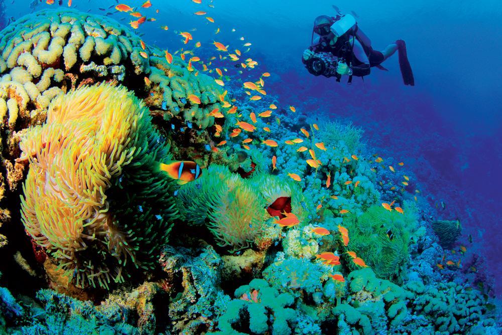 Phó Thủ tướng Chính phủ Trịnh Đình Dũng vừa ký quyết định số 28/QĐ-TTg phê duyệt Chương trình trọng điểm điều tra cơ bản tài nguyên, môi trường biển và hải đảo đến năm 2030.