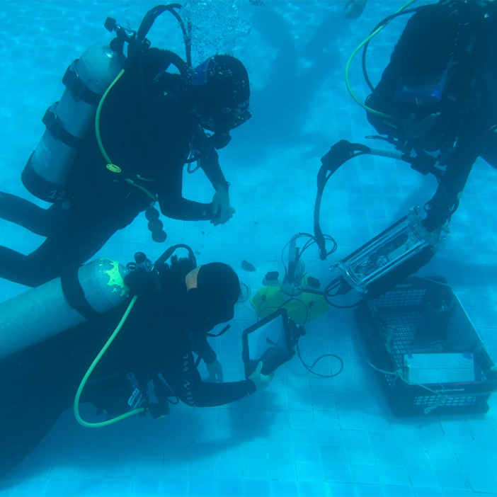 "WESTPAC training on ""Introductory scientific diving for benthic dinoflagellate sampling and processing"""