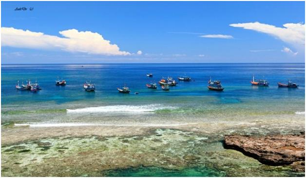 Việt Nam chính thức có Khu bảo tồn biển thứ 16