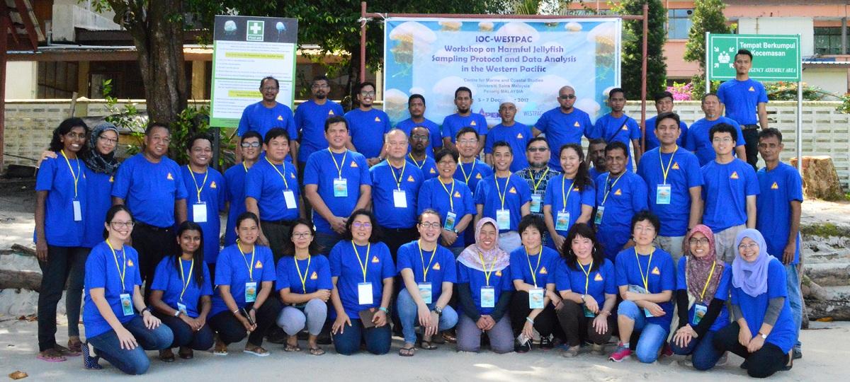 Hội thảo của WESTPAC về Phương thức thu mẫu và phân tích số liệu sứa độc trong khu vực Tây Thái Bình Dương