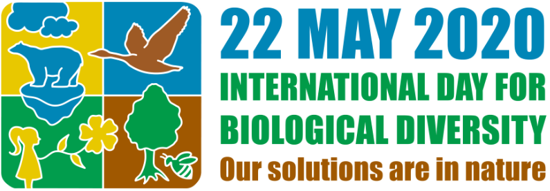 The International Day for Biological Diversity (IDB) on 22 May 2020 is