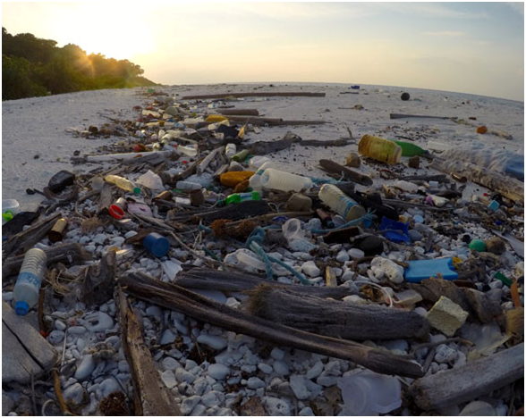 MONRE makes effort to deal with plastic pollution